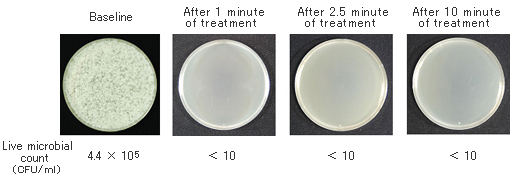Experiment data of fungus H